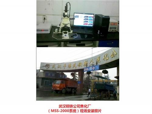 武钢焦化厂